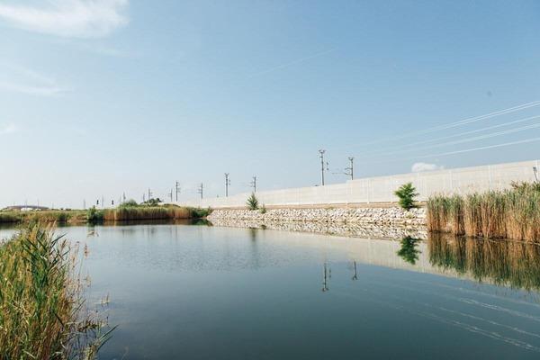 Pond near the rail network