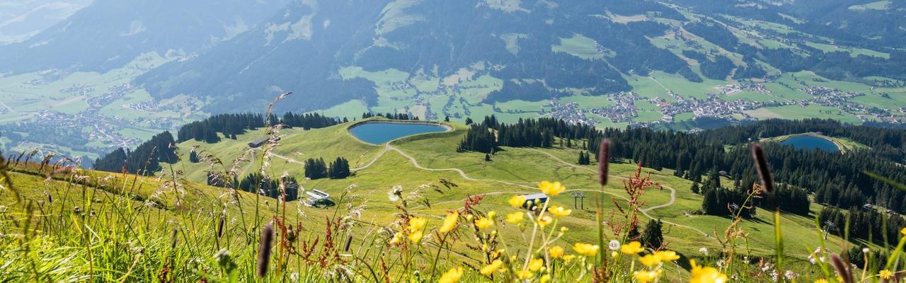 Bergpanorama in der Region Hohe Salve
