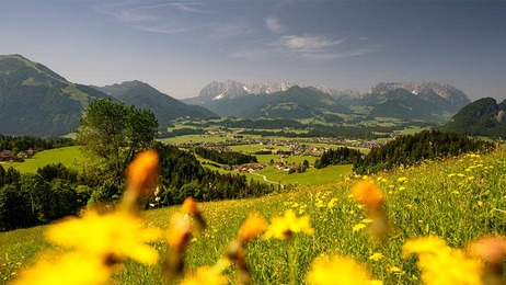 Bergpanorama in der Region Kaiserwinkl