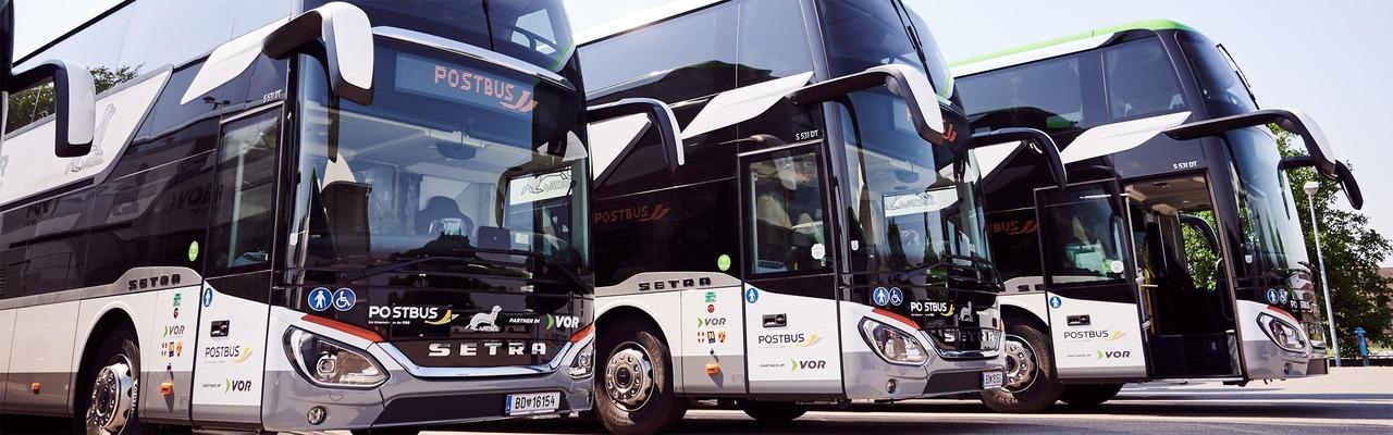 Wiesel Doppelstock-Busse