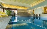 Hotel Alpina Pool