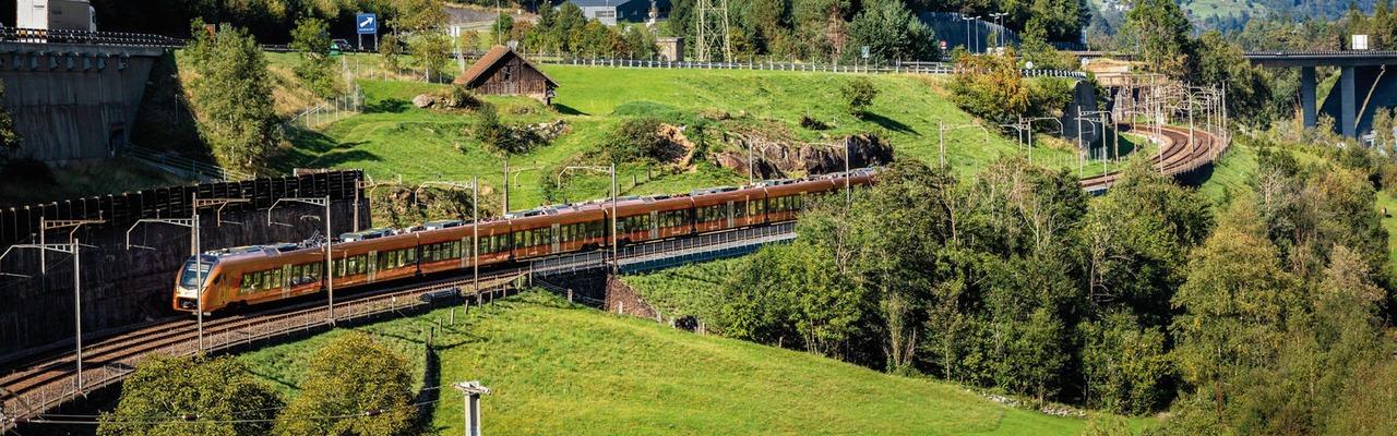 Gotthard Express
