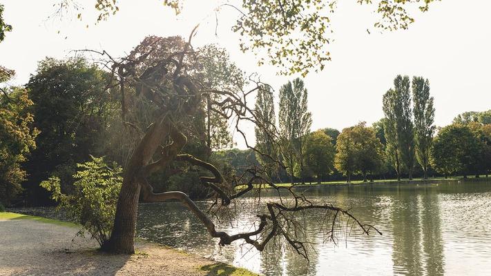 Teich in einem Park