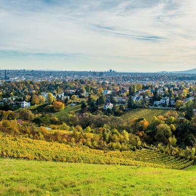 Blick vom Nussberg über Wien