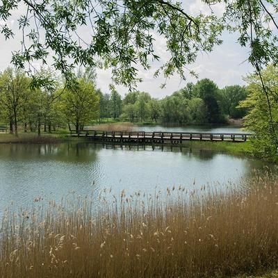See mit Brücke