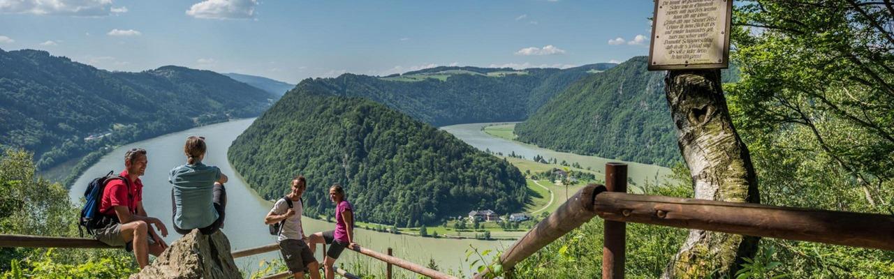 Eine Gruppe Wanderer blickt von oben auf die Schlögener Schlinge