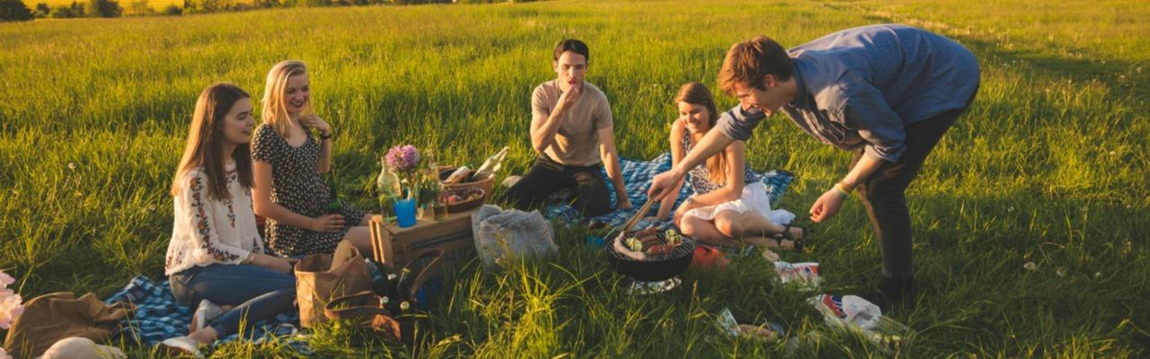 Fünf Freunde sitzen zusammen auf einer Wiese und grillen