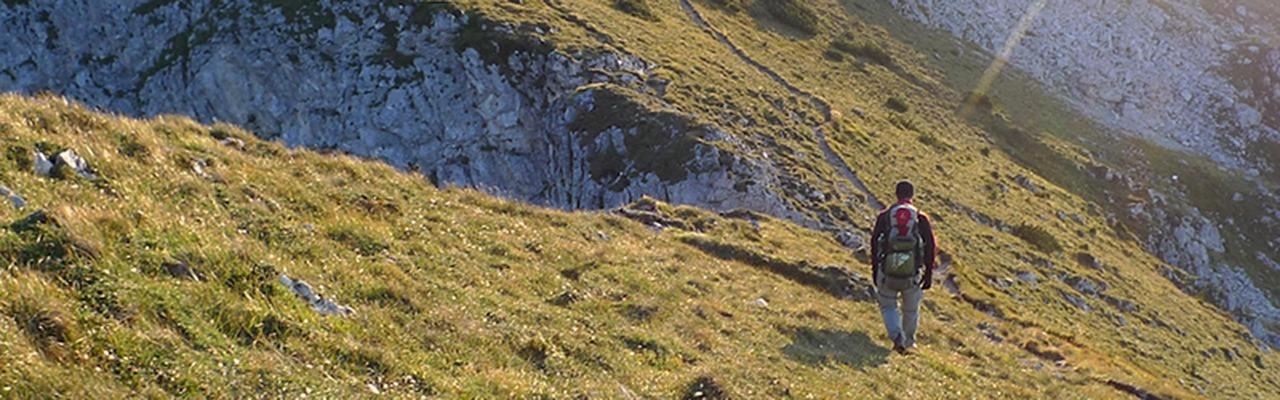 Eine Wanderin geht durch eine grüne Hügellandschaft