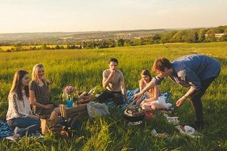 Fünf Freunde picknicken auf einer grünen Wiese