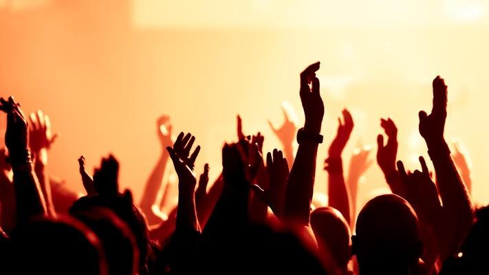 Nach oben gestreckte Arme von feiernden Leuten bei einem Konzert