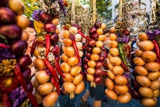 Hängende Zwiebel auf einem Markt in Nahaufnahme