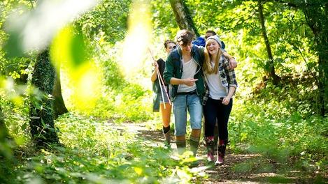 Eine Gruppe von Jugendlichen wandert durch einen Wald