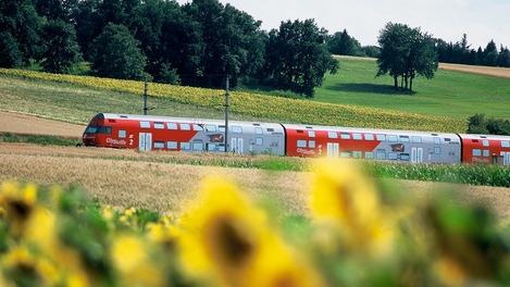 Wiesel-Zug in sommerlicher Landschaft mit Sonnenblumen im Vordergrund